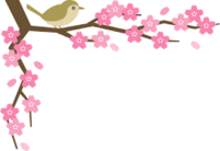 桜と目白.pngのサムネイル画像