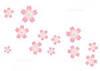桜.jpgのサムネイル画像のサムネイル画像のサムネイル画像のサムネイル画像